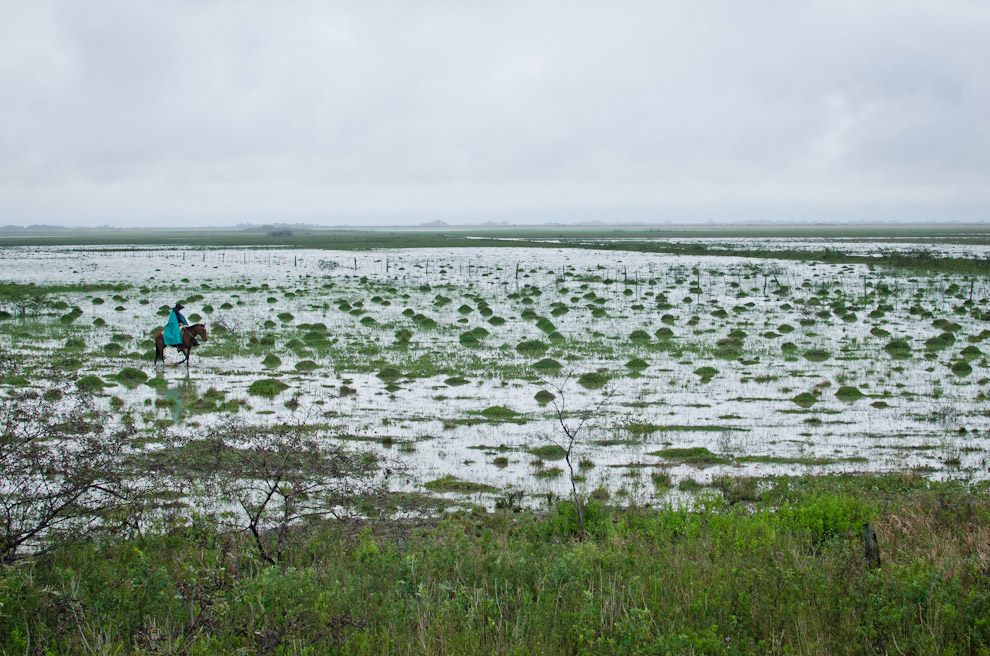 Un tropero observa el esteral que se formó a raíz de las constantes lluvias, en los campos en que su ganado suele pastar. En Arroyos y Esteros, departamento de la Cordillera. (Elton Núñez)