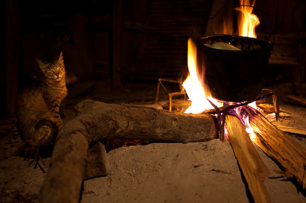 Un gato domestico se mantiene caliente cerca del fuego en una antigua cocina del rancho de la familia Blanco en la campaña de Caapucú, Departamento de Paraguarí. (Elton Núñez, 2009)