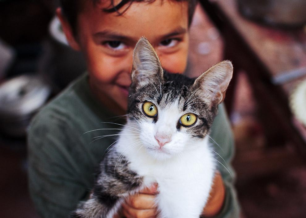 Anibal Blanco, un niño de 8 años sostiene sonriente a su mascota, un gato gris y blanco, el dia del cumpleaños de su tio Christian. Campaña de Caapucú, Departamento de Paraguarí. (Elton Núñez, 2009)