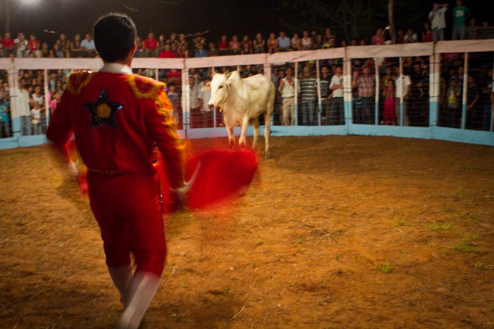 Ole! uno de los Hermanos Ledesma incita al toro a atacarlo utilizando su capote.  (15 de Agosto, Paraguay - Tetsu Espósito)