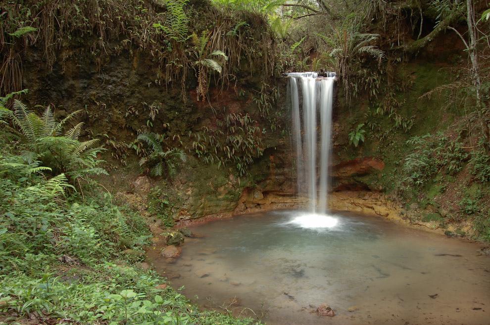 Pequeña cascada en el Arroyo de la Reserva Itabó, adornado de helechos estas aguas potables riegan la reserva. (Elton Núñez - Itabó, Paraguay)
