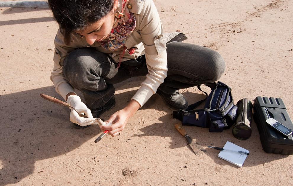 Alison Benítez realiza un levantamiento del área donde se encuentran casquillos de balas de fusíl que corresponderían a las utilizadas en la Batalla de Boquerón. (Elton Núñez - Fortín Boquerón, Paraguay)