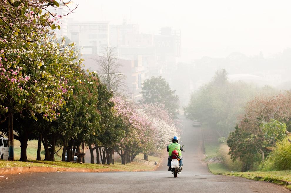 Desde la Avda. Jose Gaspar Rodriguez de Francia, un vistazo de la densa neblina cubriendo el Centro de la Ciudad a las 8:00. (Elton Núñez - Ciudad del Este, Paraguay)
