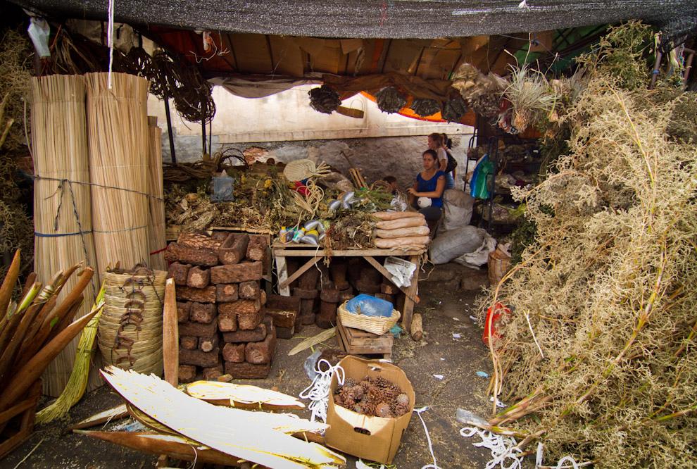 En el mercado pudimos  observar muchos locales como éste, que vendían flor de coco, ka´avove´i, frutos de pino, y varios otros ornamentos para adornar los tradicionales pesebres. (Tetsu Espósito - Asunción, Paraguay)