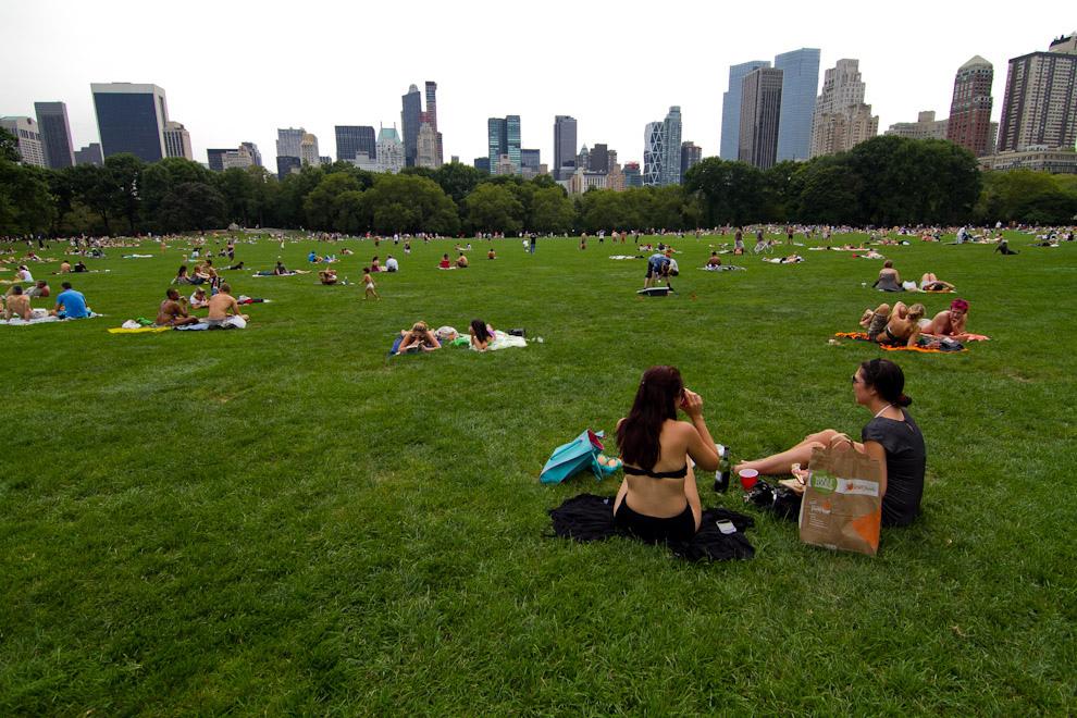 Central Park, un símbolo de Nueva York y el espacio verde mas grande que posee Manhattan, tiene unos 4 kilómetros de extensión y recibe a unos 25 millones de visitantes al año. Entre sus atracciones mas importantes se encuentran Strawberry Fields, en honor a John Lennon, asesinado a metros del lugar, así como la estatua de Alicia en el País de las Maravillas. (Tetsu Espósito - Nueva York, Estados Unidos)