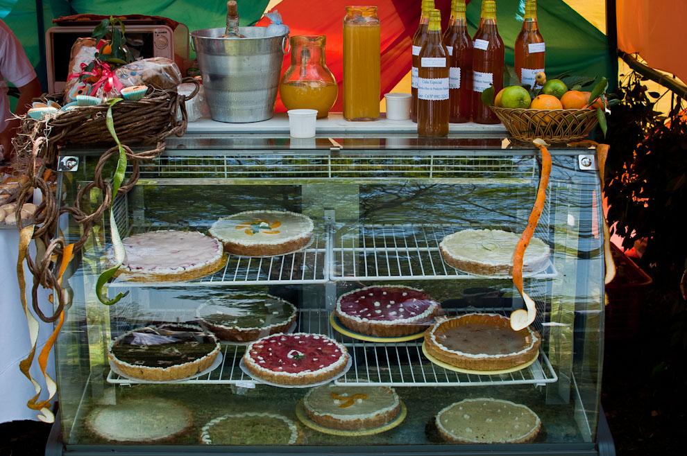 Una vista de los productos que se vendían en el Festival del Licor, en este stand se podía comprar todo tipo de cosas, licores, tartas, jugos, vinos de distintas frutas como naranja, pera, frutilla, durazno y cereza. (Elton Núñez)