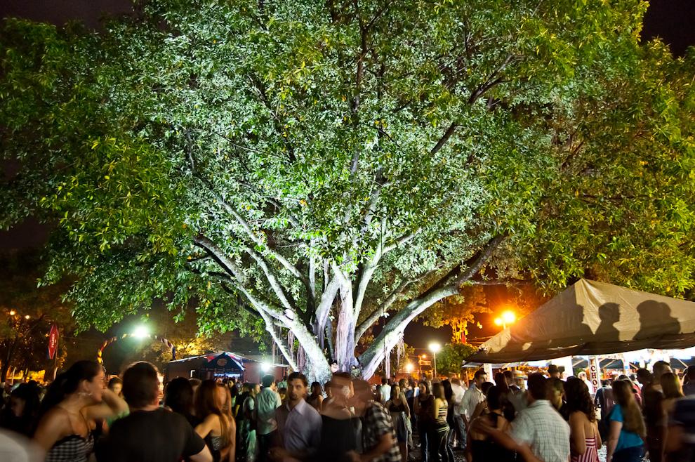 El frondoso árbol del Club Alemán de Colonia Obligado, al rededor del cual los asistentes disfrutaban su manija de cerveza en la noche del sábado 13 de Noviembre durante el Chopp Fest. (Elton Núñez)