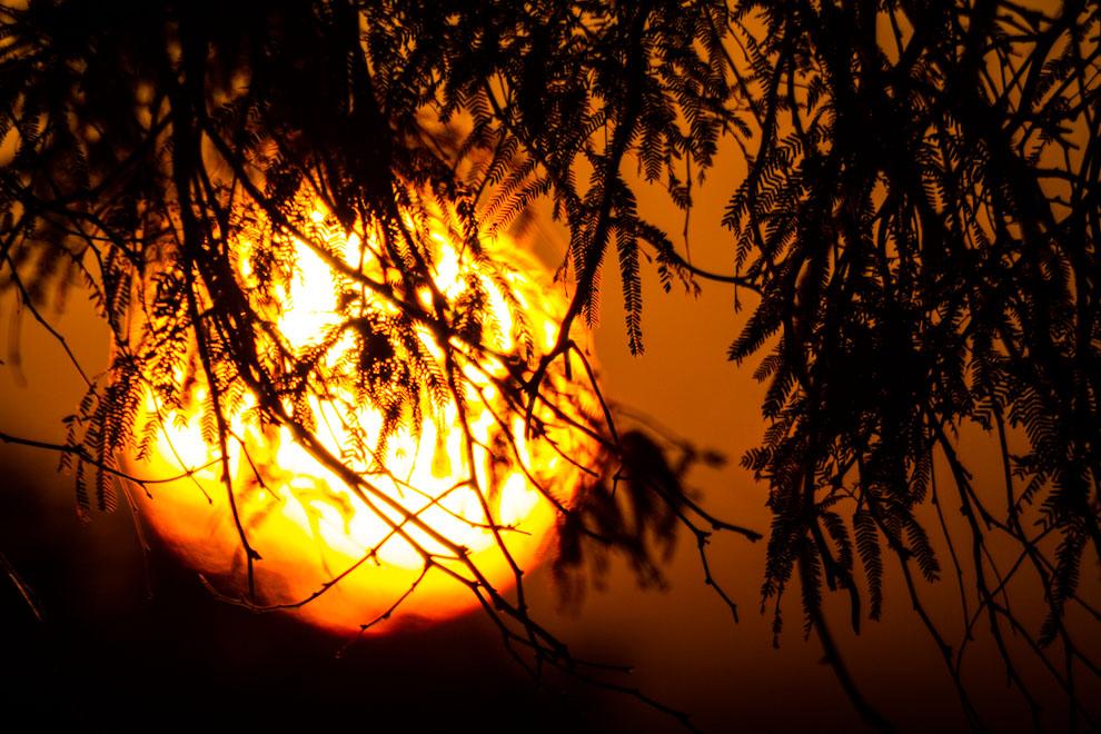 El Sol empieza a subir por el horizonte  en las primeras horas de un sábado de febrero, mientras empezaba la travesía a las lagunas Campo María, Capitán y varias otras desde el pequeño pueblo de Cruce Los Pioneros. (Tetsu Espósito)