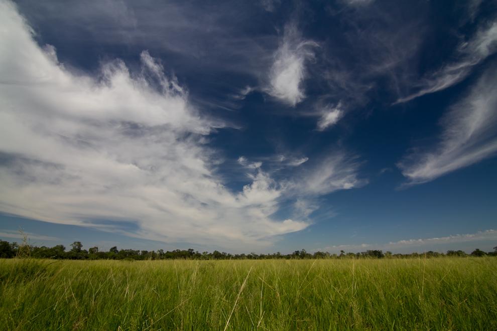 Las nubes, el cielo de un intenso azul y los pastizales de un verde a causa de las recientes lluvias creaban esta imagen para nuestro deleite. (Tetsu Espósito)