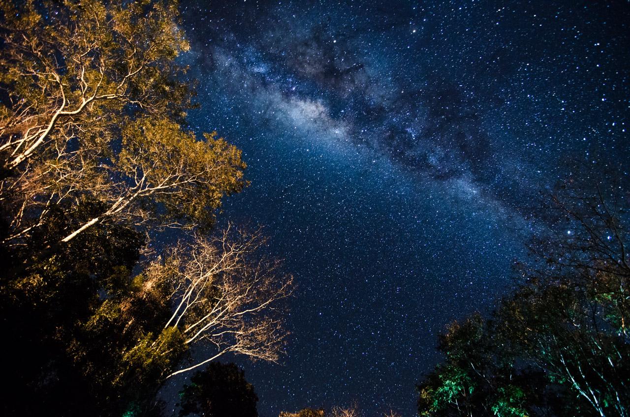 Visitar la reserva Mbaracayú tiene muchas recompensas, como es vivir noches estrelladas y serenas (cuando no hay luna). Sin embargo, en días de luna, la noche del bosque revive y los animales se manifiestan. (Elton Núñez).