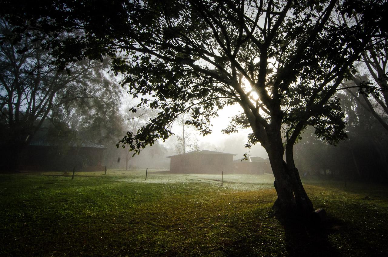 Una fría mañana asciende en la Reserva Natural del Bosque Mbaracayú, la baja temperatura no frena las actividades de aves y animales silvestres. Los amaneceres son ideales para explorar el bosque y visualizar la actividad salvaje. (Elton Núñez).
