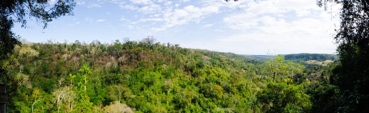 A solo metros del Salto Karapá, los visitantes pueden llegar hasta un mirador que cautiva a los turistas. Desde el mismo, es posible observar al famoso pájaro campana, posado en la copa de los árboles más altos del bosque. (Elton Núñez).
